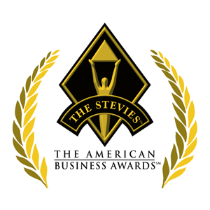 2013 Stevies Award / The American Business Awards